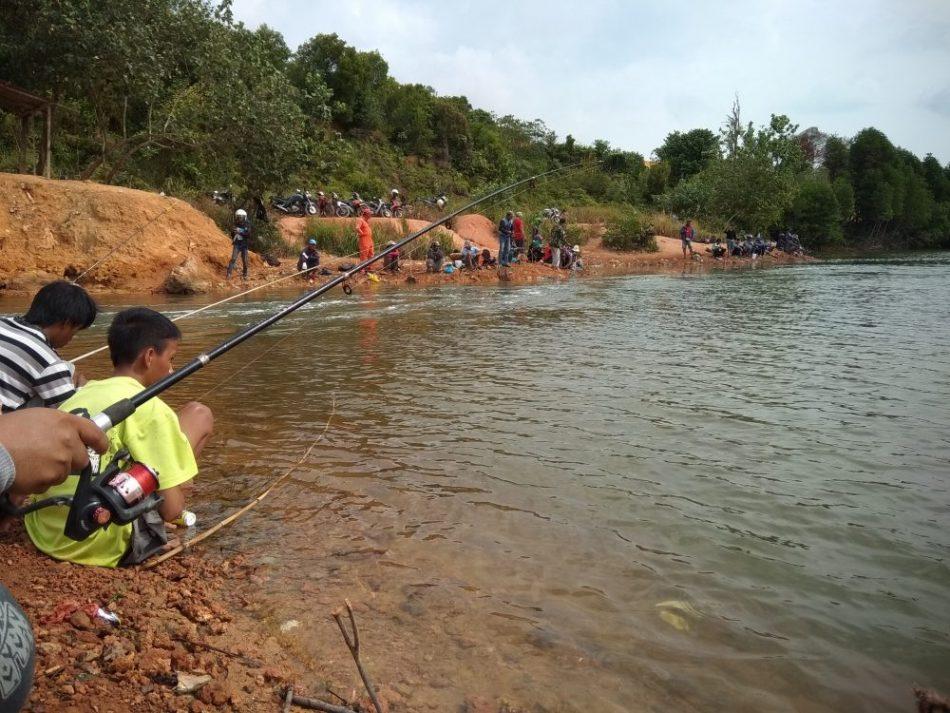 kawasan mangrove Nongsa