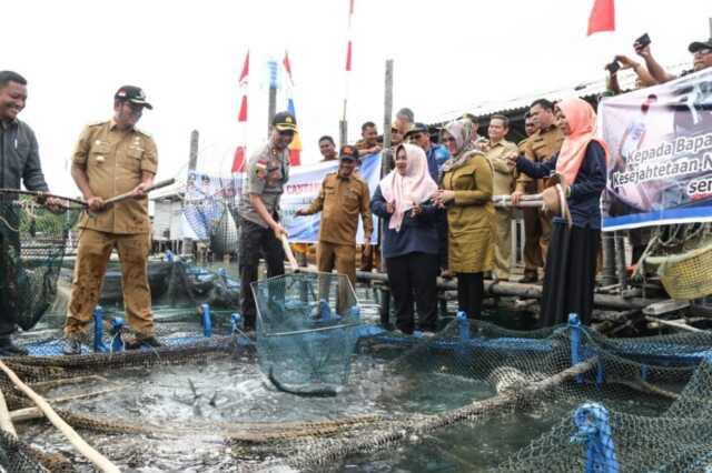 Bupati Bintan Panen Ikan Kerapu