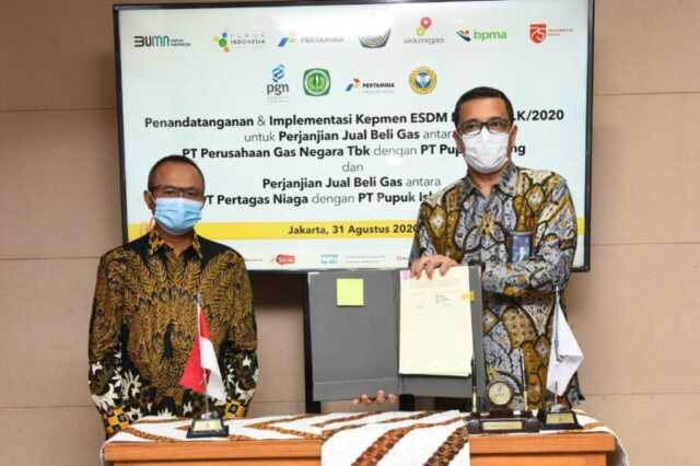 PGN Gas