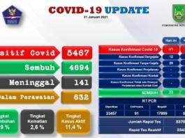 Tingkat Kesembuhan Pasien Covid-19