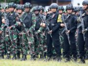 Teroris KKB Papua